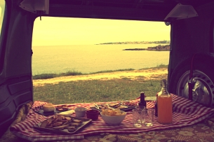 picnic van